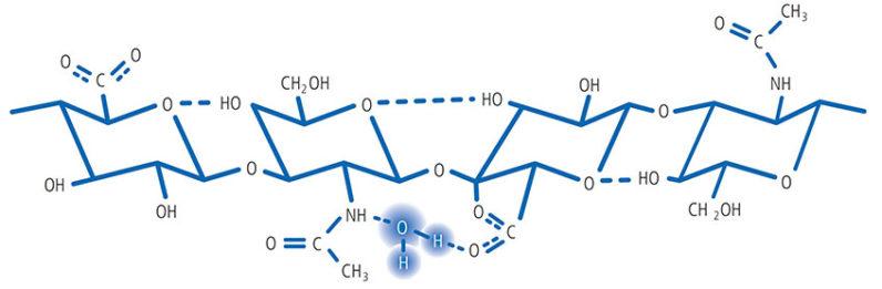 هیالورونیک اسید چیست ؟